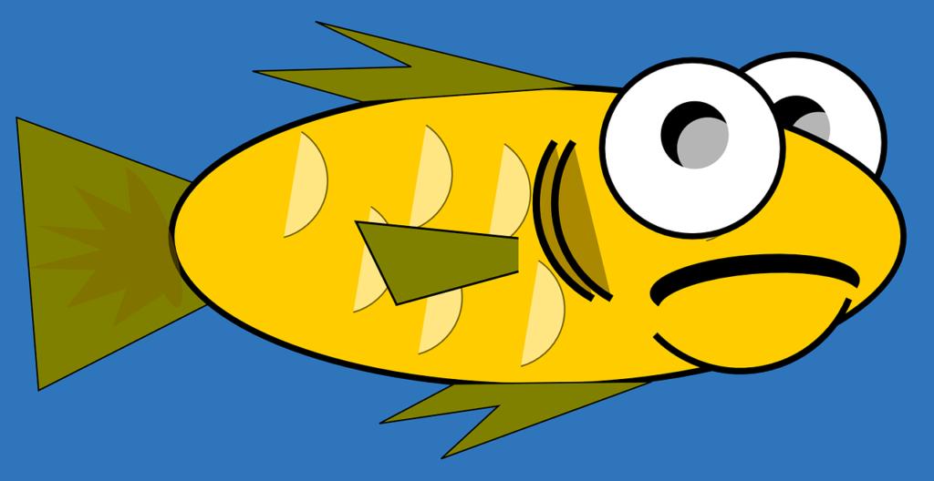 worried salmon